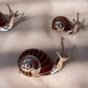 Saturno Silver Snails