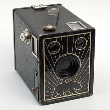 Bear Photo Special - Cameras