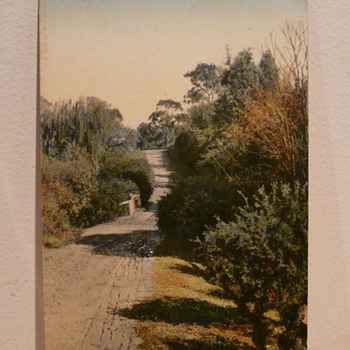 COUNTRY LANE NEAR ADELAIDE c1910.