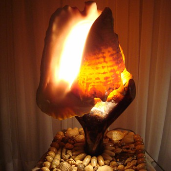 Shell Art Conch Lamp 1950s - Lamps
