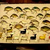 Hitails and Punkin Seeds Heddon Tackle Co.