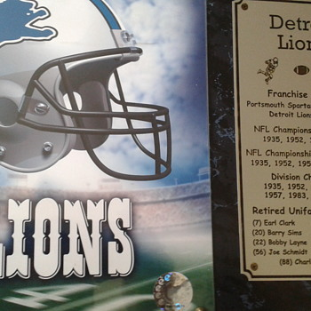 Official Licensed Detroit Lions