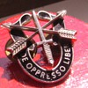 "My Brother's U.S. Army Special Forces (""Green Beret"") Regimental Crest Pin, circa 1970's - Symbols of Unconventional Warfare"