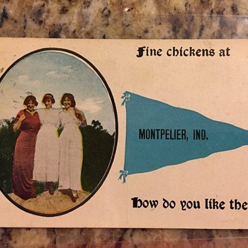 Fine chicken postcard!early 1900's