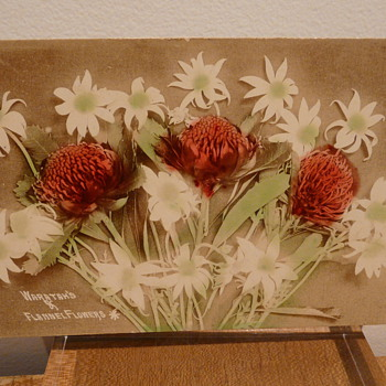 WARATAH&#039;S (sic) AND FLANNEL FLOWERS c.1914 - Postcards