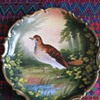 L. Sazaret & Sons Antique Austrian Handpainted Bird Plate Signed Poivrier