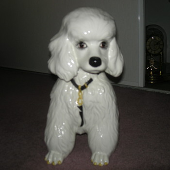 Italian Glass Poodle. - Animals