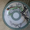 antique nippon plate???