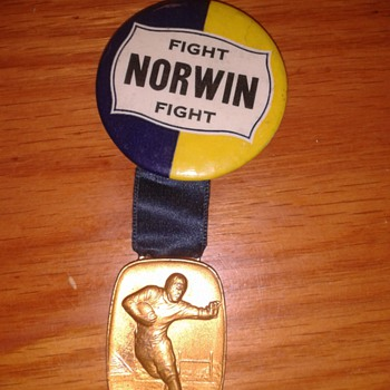 Whitehead & Hoag Football pin back Norwin Knights? - Football