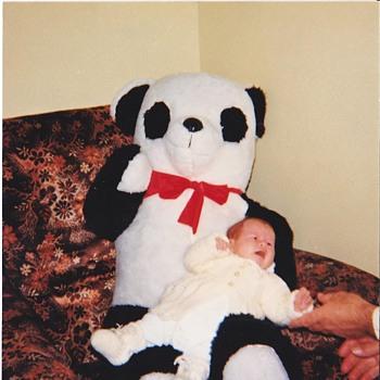 My first Panda - Animals