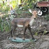 Small Concrete Deer Lawn Ornament