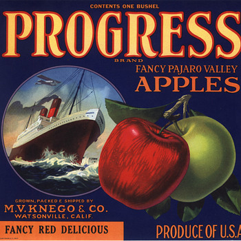 Progress rare Watsonville apple crate label - Paper