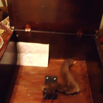 Re-post  Mousetrap with Museum ones and Christie&#039;s Auction Eng. Trap