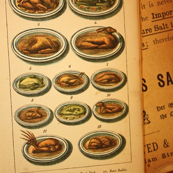 Warne's Model Cookery and Housekeeping Book - Books