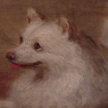 Painting Of An American Eskimo/Spitz Dog By George Augustus Baker (1821-1880)