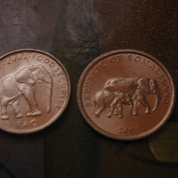 Elephant coins