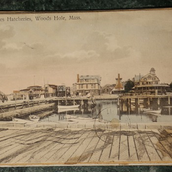 1911 Postcard from United States Hatcheries, Wood's Hole, Mass.  - Postcards