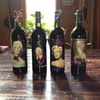 Beautiful Marilyn Monroe/Norma Jeane Wine Collections