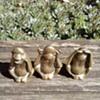 My brass monkeys