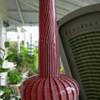 Franz Welz Vase or Lamp?