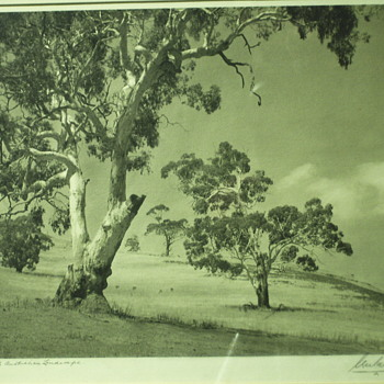"South Australian Landscape""Unreadable,1939"" - Photographs"