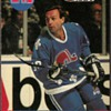 1990 - Hockey Cards (Quebec Nordiques)