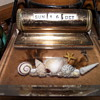 My Desk Calendar--Shells in Acrylic? By Nichols Products