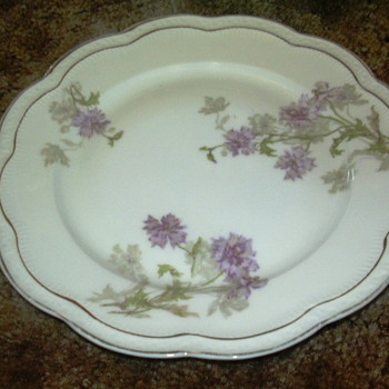 Bavarian China - Early 1900's?