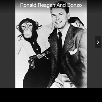 President Reagan and chimpanzee