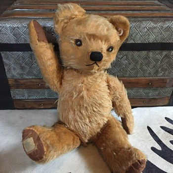 Vintage,or antique teddy bear