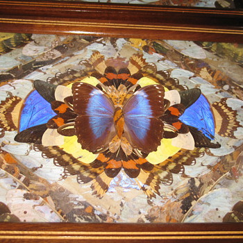Brazilian Butterfly Inlaid trays