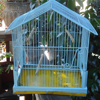 BIRD CAGE :) Made by Pacific