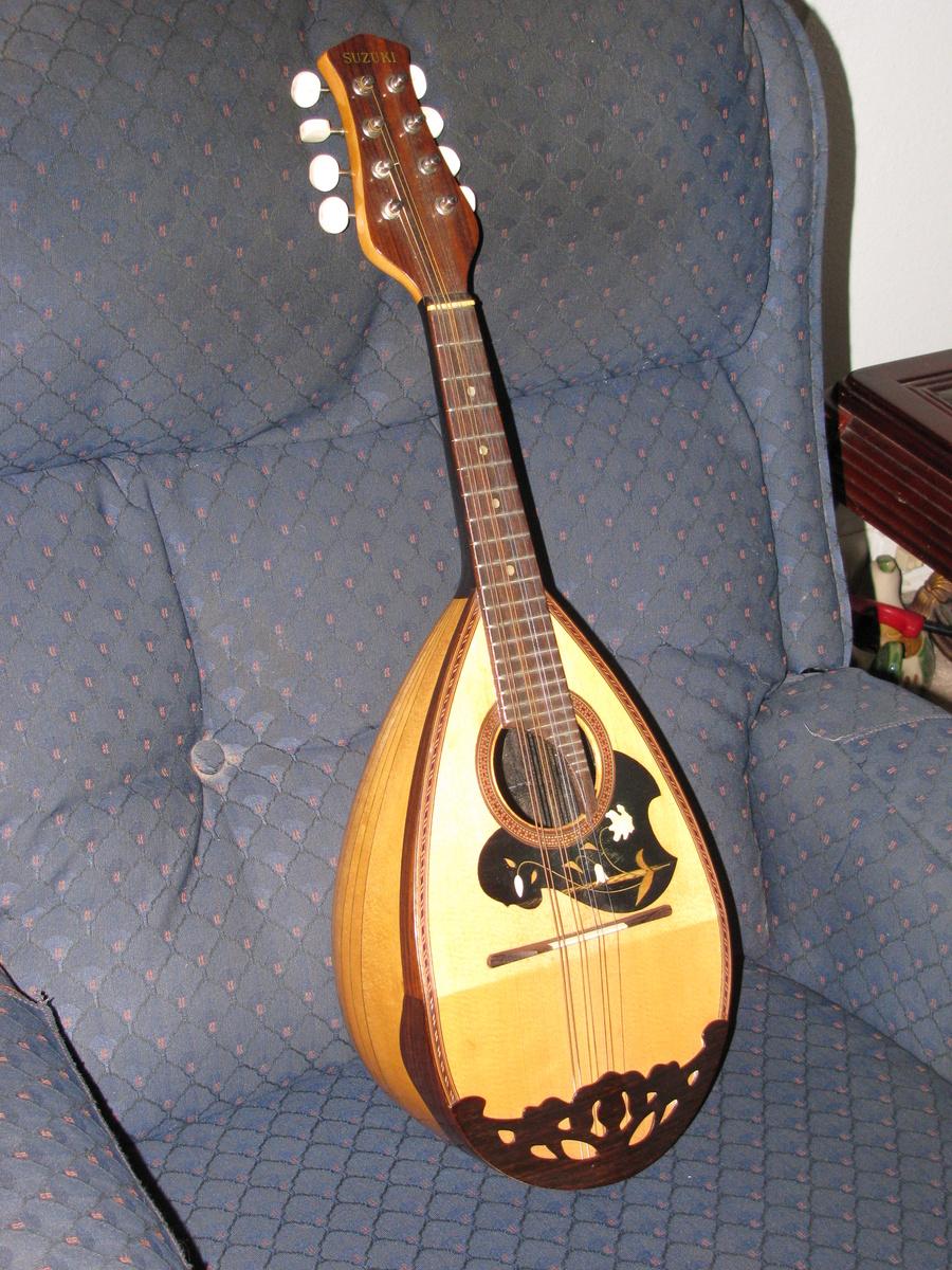 Suzuki Mandolin Model