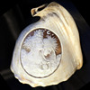Victorian Conch Shell Woman, Goddess ?