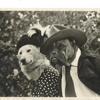 Vintage photo - Photographs