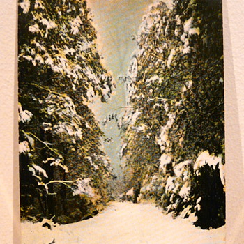 TOMMYS BEND IN THE SNOW MARYSVILLE 1911. - Postcards