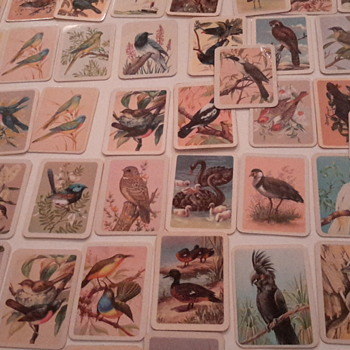 Birds of Australia cards from Tuckfields tea