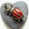 Antique stag beetle brooch, silver, enamel, pearls.