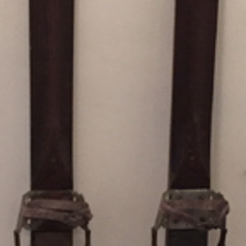 Harvey E. Dodds skis.