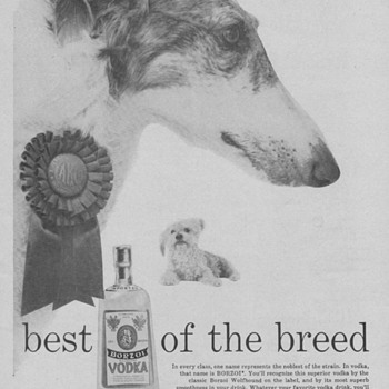 1955 Borzoi Vodka Advertisement