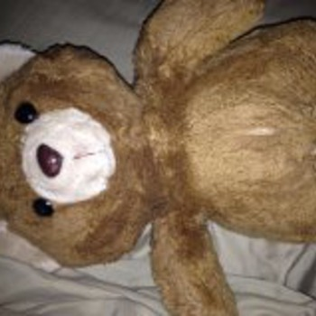 HELP! I am trying to find out what kind of bear this is that my grandmother(passed) gave me when i was a little girl