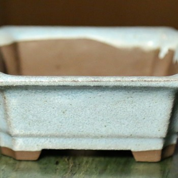 Teeny Bonsai Pot