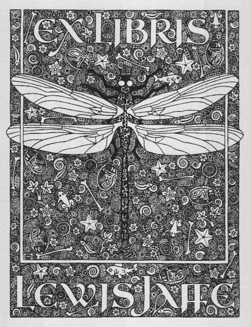 dragonfly-lew-jaffe