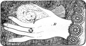 ILLUSTRATION V: Hand With Dove Dish: Atterbury described this as a dish cover in his patent dated August 27, 1889.