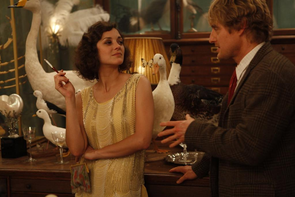 "Above, Marion Cotillard and Owen Wilson flirt at the 170-year-old Deyrolle taxidermy shop in a film still from ""Midnight in Paris."" At top, part of the Paris shop's menagerie; image via Deyrolle.com."