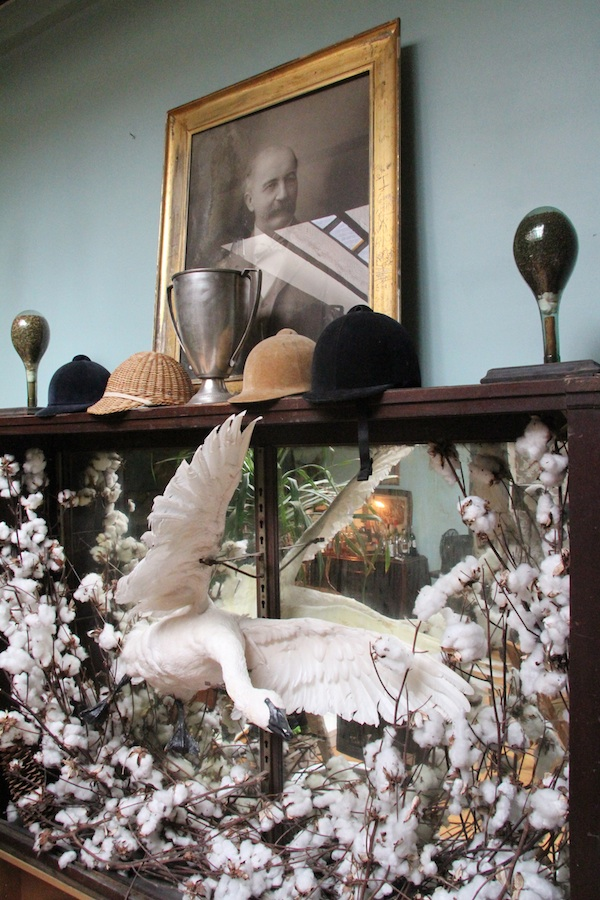 The Hoveys' aesthetic incorporates turn-of-the-century militaria and taxidermy. Photo by Porter Hovey.