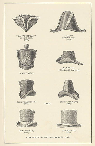 "Shapes and styles of beaver hat 1776-1825, from the 1892 book ""Castorologia, Or, The History and Traditions of the Canadian Beaver,"" by Horace T. Martin."