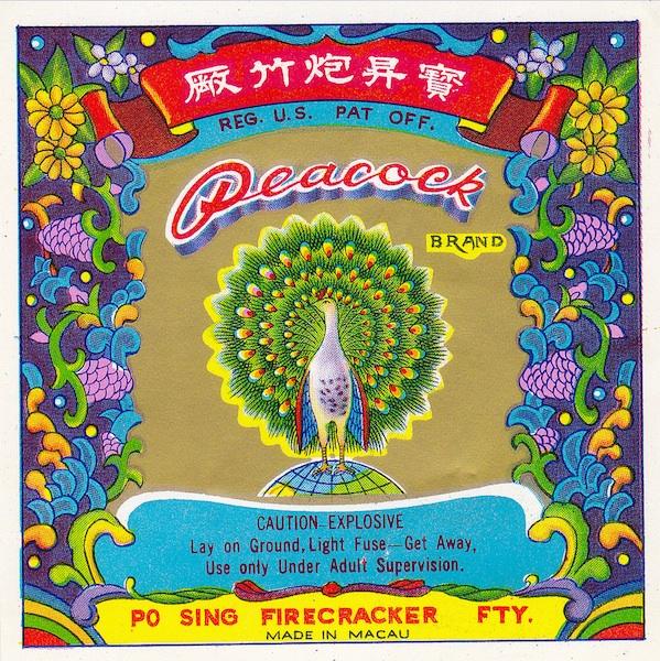 firecrackers_peacock2