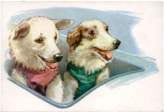 "A 1972 Soviet postcard depicting Belka and Strelka in the ""cockpit"" of their rocket, by the artist L. Aristov, from the collection titled ""Friends of Man."" (© FUEL Publishing)"