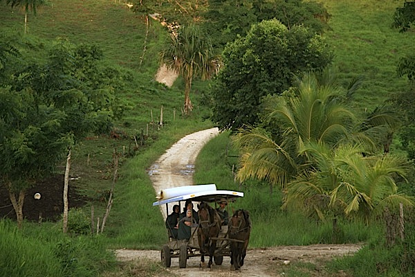 Top: The entrance to the Midnight Terror Cave. Above: Mennonites in Belize, like the one who rescued a looter in the Midnight Terror Cave, still get around by horse and buggy.